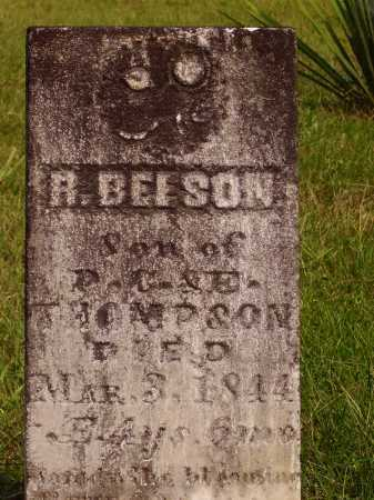 THOMPSON, R. BEESON - Meigs County, Ohio | R. BEESON THOMPSON - Ohio Gravestone Photos