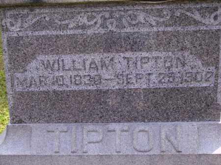 TIPTON, WILLIAM - CLOSEVIEW - Meigs County, Ohio   WILLIAM - CLOSEVIEW TIPTON - Ohio Gravestone Photos