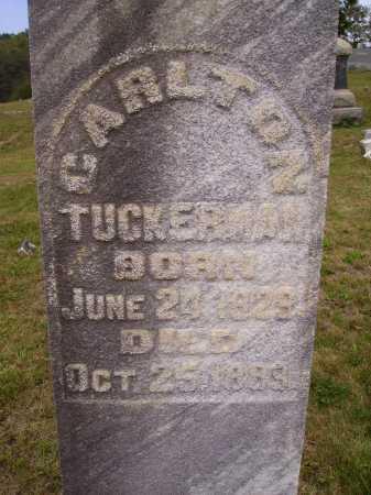 TUCKERMAN, CARLTON - Meigs County, Ohio | CARLTON TUCKERMAN - Ohio Gravestone Photos