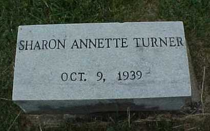 TURNER, SHARON ANNETTE - Meigs County, Ohio | SHARON ANNETTE TURNER - Ohio Gravestone Photos