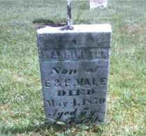 VALE, WASHINGTON - Meigs County, Ohio | WASHINGTON VALE - Ohio Gravestone Photos