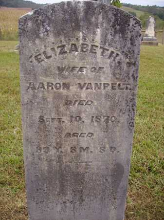 VANPELT, ELIZABETH - Meigs County, Ohio | ELIZABETH VANPELT - Ohio Gravestone Photos