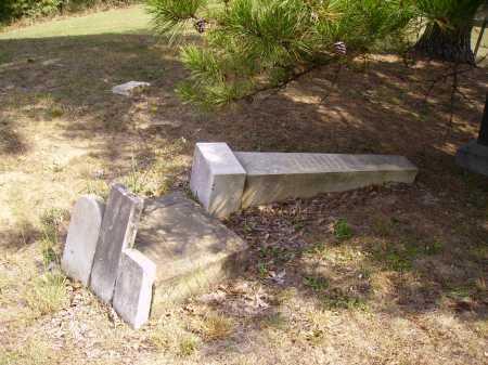 CHAPIN VANPELT, SOPHIA - Meigs County, Ohio | SOPHIA CHAPIN VANPELT - Ohio Gravestone Photos