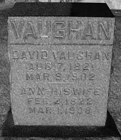VAUGHAN, DAVID - Meigs County, Ohio | DAVID VAUGHAN - Ohio Gravestone Photos