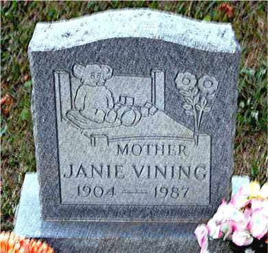 VINING, JANIE - Meigs County, Ohio | JANIE VINING - Ohio Gravestone Photos