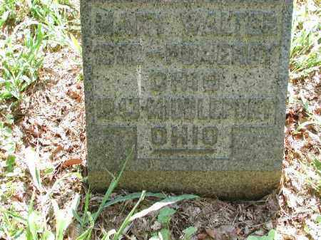 WALTER, MARY - Meigs County, Ohio | MARY WALTER - Ohio Gravestone Photos