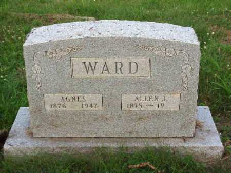WARD, AGNES - Meigs County, Ohio | AGNES WARD - Ohio Gravestone Photos