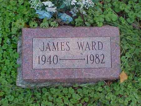 WARD, JAMES - Meigs County, Ohio | JAMES WARD - Ohio Gravestone Photos
