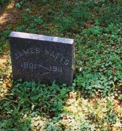 WATTS, JAMES - Meigs County, Ohio   JAMES WATTS - Ohio Gravestone Photos
