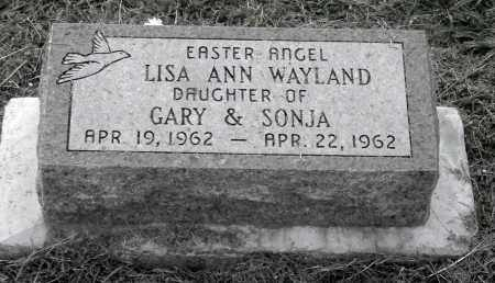 WAYLAND, LISA ANN - Meigs County, Ohio | LISA ANN WAYLAND - Ohio Gravestone Photos