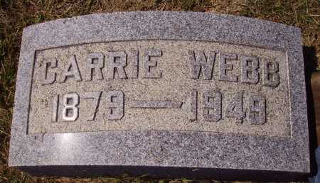 WEBB, CARRIE - Meigs County, Ohio | CARRIE WEBB - Ohio Gravestone Photos