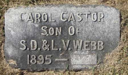 WEBB, CAROL CASTOR - Meigs County, Ohio | CAROL CASTOR WEBB - Ohio Gravestone Photos