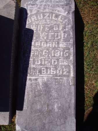 CASTOR WEBB, DRUZILLA - CLOSE VIEW - Meigs County, Ohio | DRUZILLA - CLOSE VIEW CASTOR WEBB - Ohio Gravestone Photos