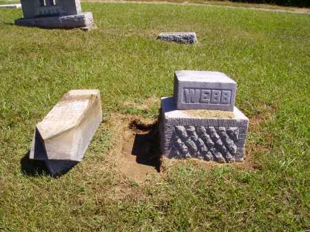 WEBB, DRUZILLA A. - OVERALL VIEW - Meigs County, Ohio | DRUZILLA A. - OVERALL VIEW WEBB - Ohio Gravestone Photos