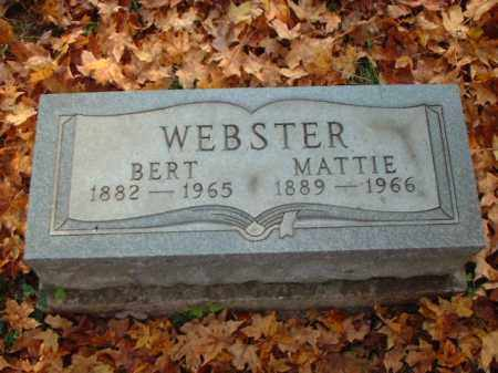 WEBSTER, MATTIE - Meigs County, Ohio | MATTIE WEBSTER - Ohio Gravestone Photos
