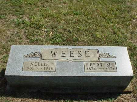 WEESE, NELLIE - Meigs County, Ohio | NELLIE WEESE - Ohio Gravestone Photos