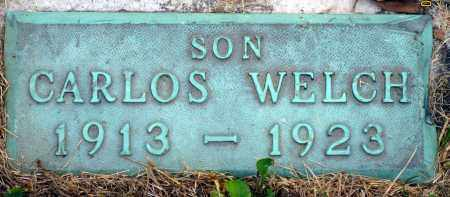 WELCH, CARLOS - Meigs County, Ohio | CARLOS WELCH - Ohio Gravestone Photos