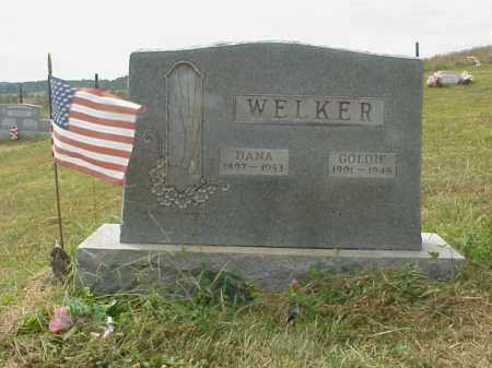 WELKER, DANA - Meigs County, Ohio | DANA WELKER - Ohio Gravestone Photos