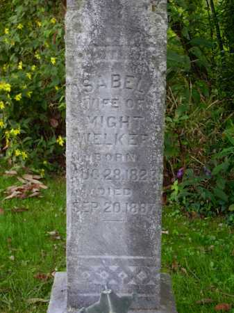 WELKER, ISABELL - Meigs County, Ohio | ISABELL WELKER - Ohio Gravestone Photos