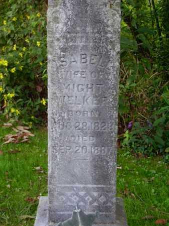 VICKENHAM WELKER, ISABELL - Meigs County, Ohio | ISABELL VICKENHAM WELKER - Ohio Gravestone Photos