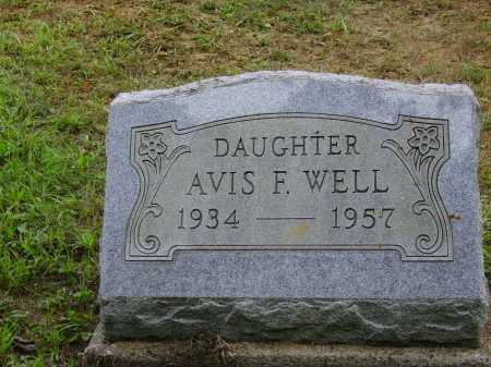 WELL, AVIS F. - Meigs County, Ohio | AVIS F. WELL - Ohio Gravestone Photos
