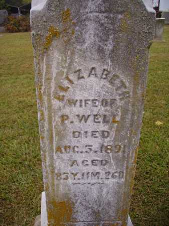 WELL, ELIZABETH - Meigs County, Ohio | ELIZABETH WELL - Ohio Gravestone Photos