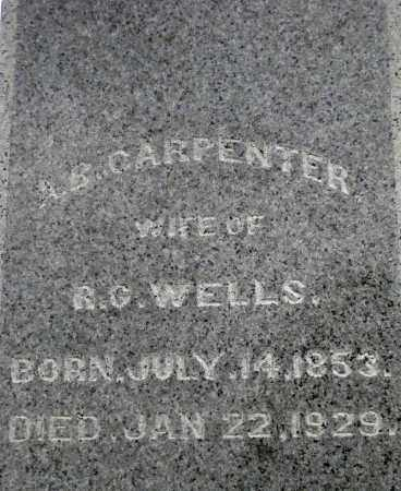 WELLS, AMANDA B - Meigs County, Ohio | AMANDA B WELLS - Ohio Gravestone Photos