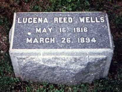 REED WELLS, LUCENA - Meigs County, Ohio | LUCENA REED WELLS - Ohio Gravestone Photos
