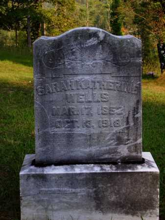EWING WELLS, SARAH KATHERINE - Meigs County, Ohio | SARAH KATHERINE EWING WELLS - Ohio Gravestone Photos