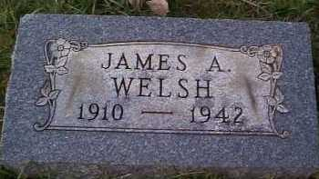 WELSH, JAMES - Meigs County, Ohio | JAMES WELSH - Ohio Gravestone Photos
