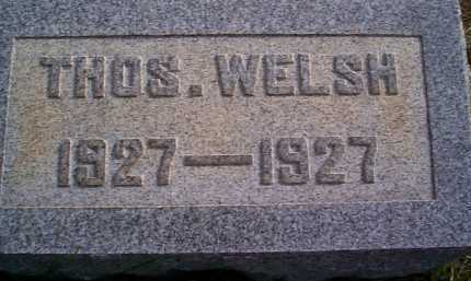 WELSH, THOMAS - Meigs County, Ohio | THOMAS WELSH - Ohio Gravestone Photos