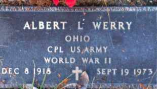 WERRY, ALBERT - Meigs County, Ohio | ALBERT WERRY - Ohio Gravestone Photos