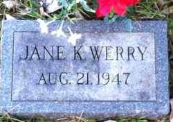 WERRY, JANE - Meigs County, Ohio | JANE WERRY - Ohio Gravestone Photos