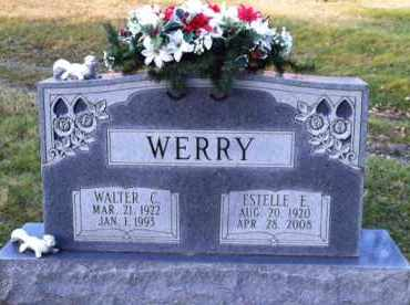 WERRY, WALTER - Meigs County, Ohio | WALTER WERRY - Ohio Gravestone Photos