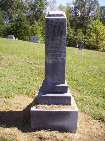 WESTFALL, JAMES L. - OVERALL VIEW - Meigs County, Ohio | JAMES L. - OVERALL VIEW WESTFALL - Ohio Gravestone Photos