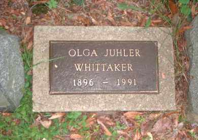 JUHLER WHITTAKER, OLGA - Meigs County, Ohio | OLGA JUHLER WHITTAKER - Ohio Gravestone Photos