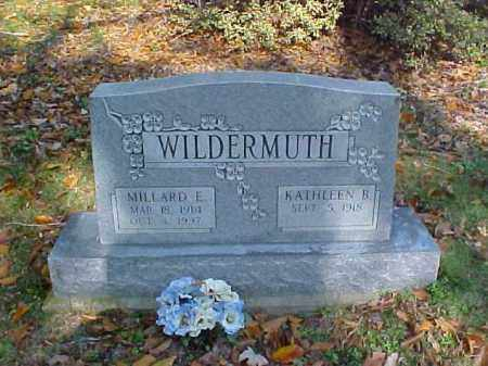 WILDERMUTH, MILLARD E. - Meigs County, Ohio | MILLARD E. WILDERMUTH - Ohio Gravestone Photos