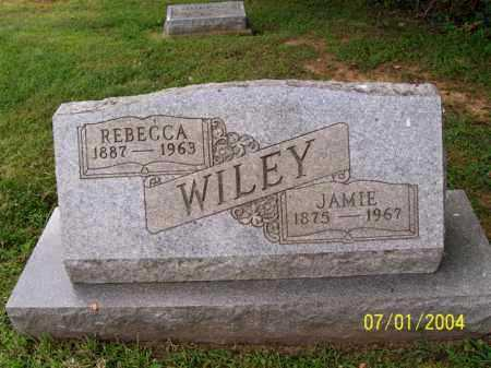 WILEY, JAMIE - Meigs County, Ohio | JAMIE WILEY - Ohio Gravestone Photos