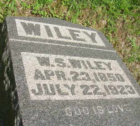 WILEY, W S - Meigs County, Ohio | W S WILEY - Ohio Gravestone Photos