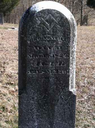 WILL, GEORGE W - Meigs County, Ohio | GEORGE W WILL - Ohio Gravestone Photos