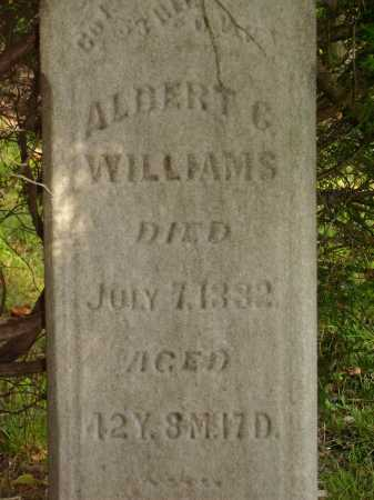 WILLIAMS, ALBERT G. - Meigs County, Ohio | ALBERT G. WILLIAMS - Ohio Gravestone Photos