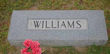 WILLIAMS, C. - Meigs County, Ohio | C. WILLIAMS - Ohio Gravestone Photos