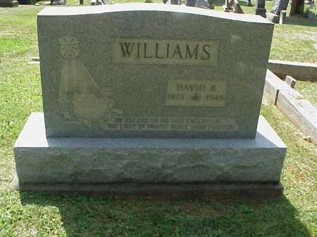 WILLIAMS, DAVID B. - Meigs County, Ohio | DAVID B. WILLIAMS - Ohio Gravestone Photos