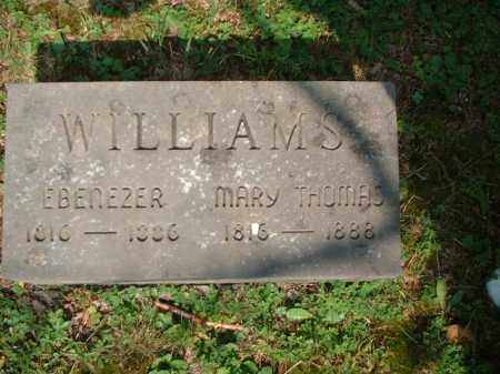 THOMAS WILLIAMS, MARY - Meigs County, Ohio | MARY THOMAS WILLIAMS - Ohio Gravestone Photos