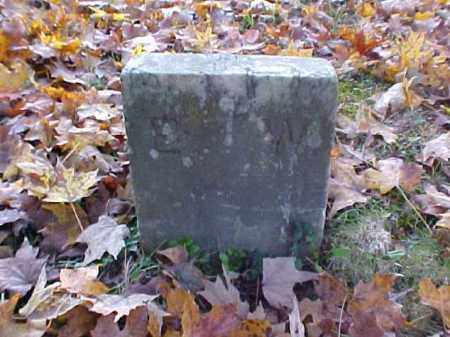 WILLIAMS, E. W. - Meigs County, Ohio | E. W. WILLIAMS - Ohio Gravestone Photos