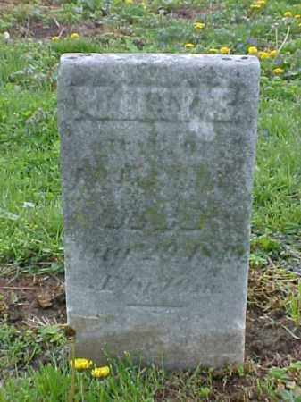 WILLIAMS, MARY E. - Meigs County, Ohio | MARY E. WILLIAMS - Ohio Gravestone Photos