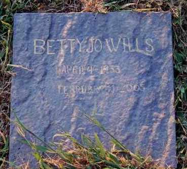 WILLS, BETTY JO - Meigs County, Ohio | BETTY JO WILLS - Ohio Gravestone Photos