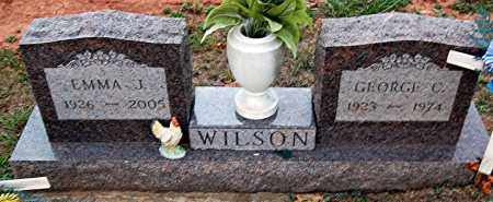 WILSON, GEORGE - Meigs County, Ohio | GEORGE WILSON - Ohio Gravestone Photos