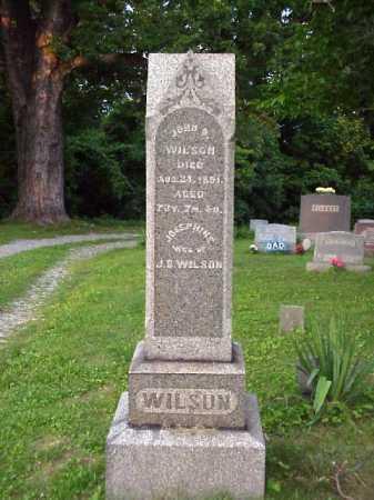 WILSON, JOSEPHINE - Meigs County, Ohio | JOSEPHINE WILSON - Ohio Gravestone Photos