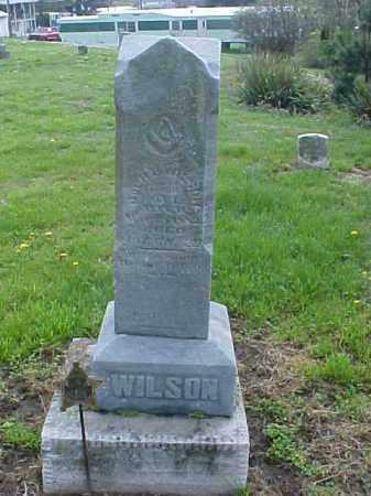 WILSON, R. B., COL - Meigs County, Ohio   R. B., COL WILSON - Ohio Gravestone Photos